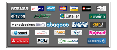The various different payment methods at LoteriiOnline.net